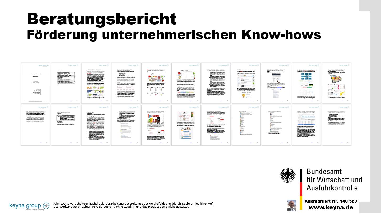 Beratungsbericht Förderung unternehmerischen Know-hows