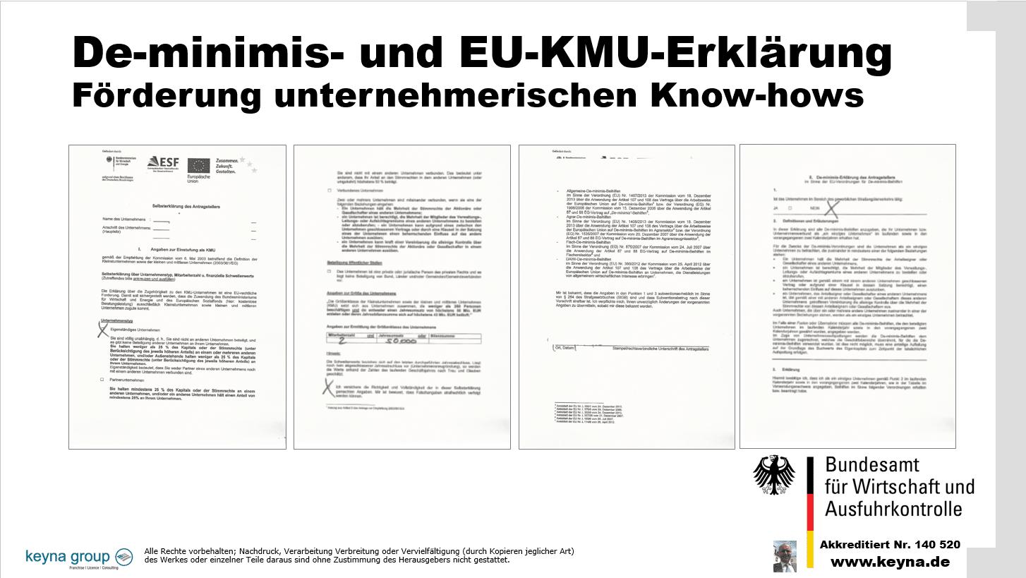 De-minimis- und EU-KMU-Erklärung Förderung unternehmerischen Know-hows