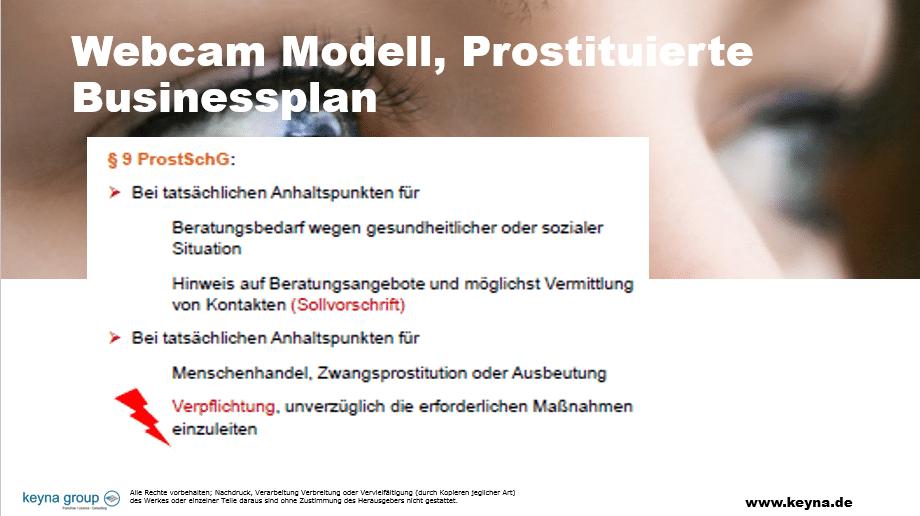 Businessplan Prostituierte Webcam Erotikmodell, Businessplan Prostituierte Webcam Erotikmodell