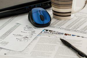 Businessplan Finanz- und Rechnungswesenfachmann