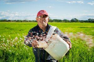 Businessplan Landwirt