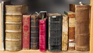Businessplan Literaturagent