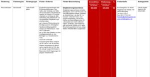 Fördermittel – Eingliederungszuschuss