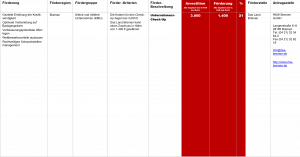 Fördermittel – Unternehmens-Check-Up